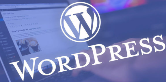Разработка сайта на WordPress